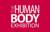 The Human Body – Az emberi test