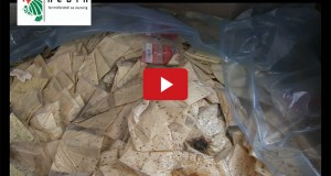 Több éve lejárt penészes sajt van a Te hűtődben is (videóval)